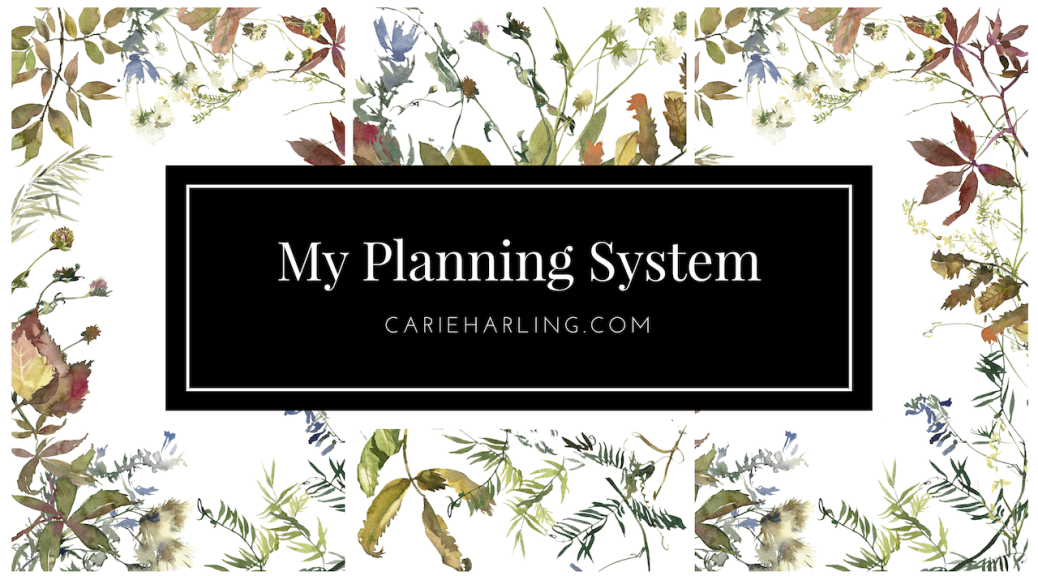 My Planning System FI