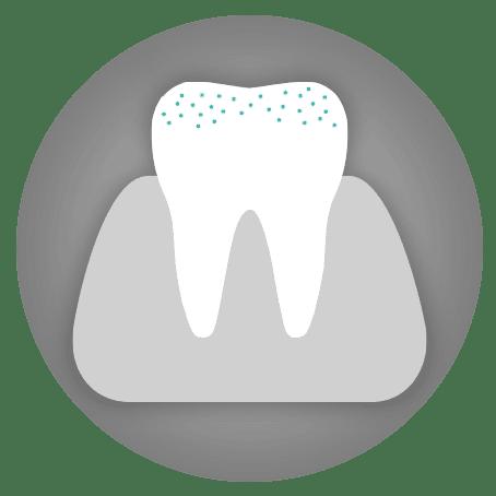Dental Treatments: Oral Hygiene