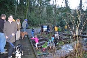 Small, enthusiastic gathering for the March 1, 2016 release of the 1st batch of salmon.