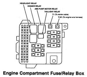 Acura RL (1996  1999)  wiring diagrams  fuse panel