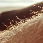Behandelingen-haargroei