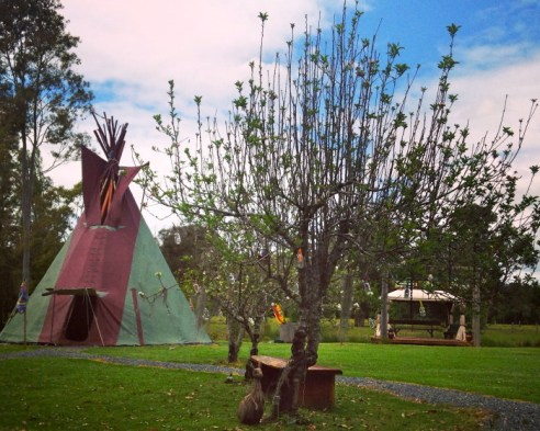 A taste of tipis in the Manning Valley.