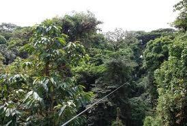 20101227Costa Rica2