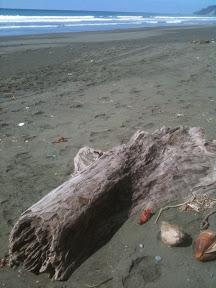 20110104Costa Rica1