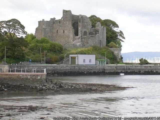 Carlingfor Johns Castle