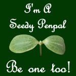 Seedy Penpals Small Badge