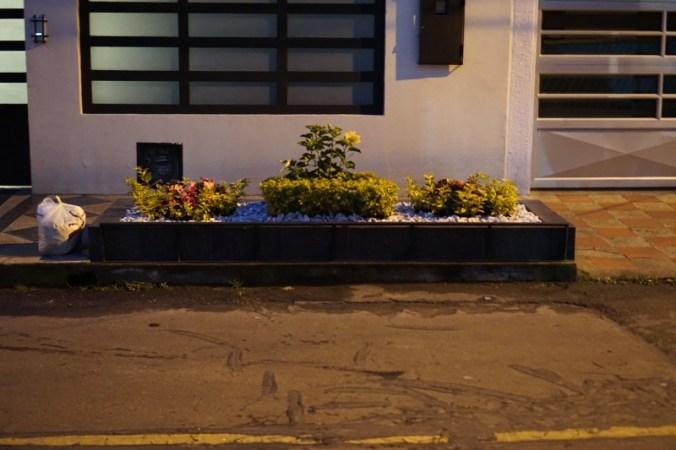 Flower arrangement Modelia, Bogota