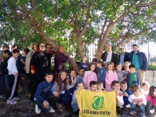 Festa dell'Albero 2014