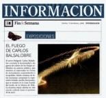 53_090213_DiarioInformacion_EXPO_Jardin_iluminado_byRedaccion_2009