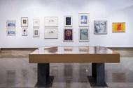 100_Artistas_Solidarios+2015_Arte_Democracia_06