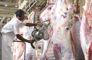 matadouro petrolina/foto PMP/divulgação