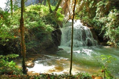Cascadas del parque (Monasterio de Piedra)