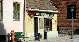 Norsk Folkmuseum. Tienda de Ultramarinos