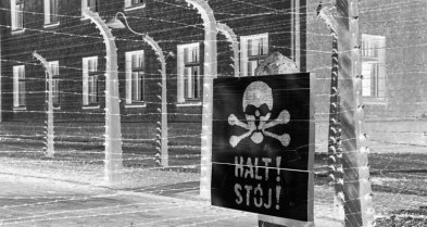Auschwitz I. HALT. Alambradas y Barracones