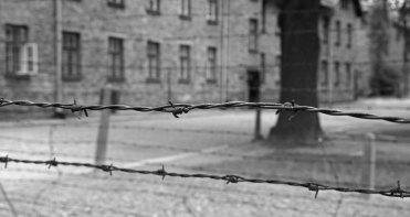 Auschwitz I. Alambradas