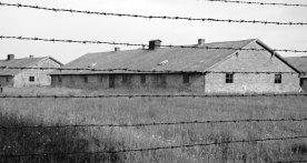 Auschwitz II-Birkenau. Alambradas y Barracones