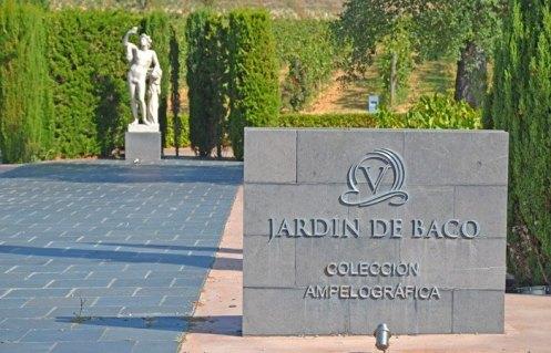 Jardín de Baco - Bodegas Vivanco