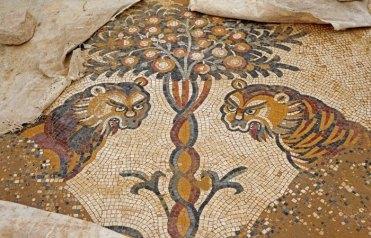 Iglesia de San Pablo: Los leones de Um-ar-Rasas
