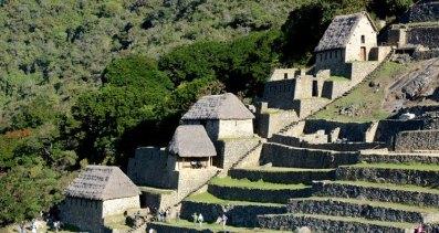 Machu Picchu, Terrazas de Cultivo, Colcas y Selva