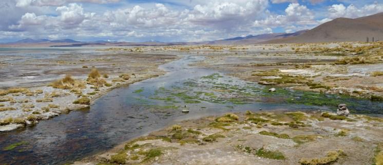 El Salar de Chalvir se convierte en una laguna en época de lluvias