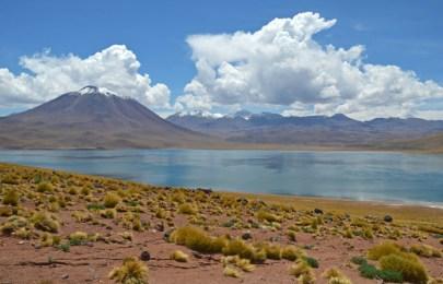 Laguna y volcán Miscanti