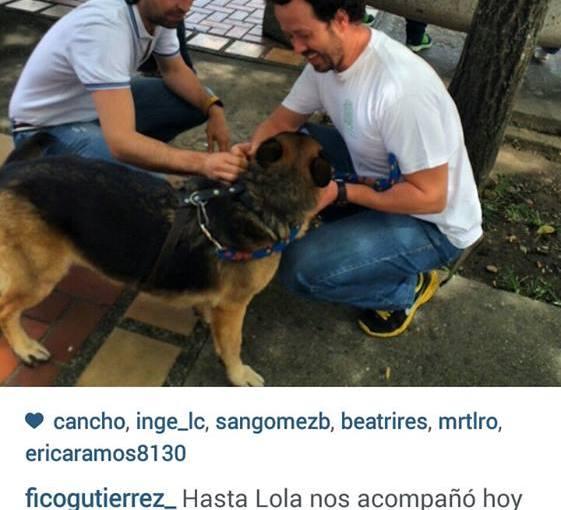 Caminando con Lola por #MedellinAPie