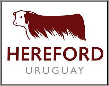 HerefordsUruguayLogo