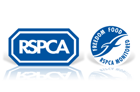 RSPCA-CreativeStrategy1