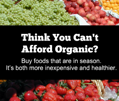 Buy foods that are in season