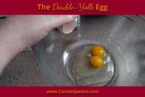 The Double-Yolk Egg