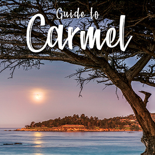 Guide to Carmel 2018/19