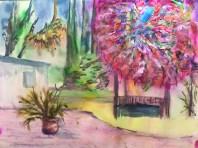 Hafeman-Mark-Backyard-Fireball