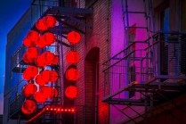 Cindy Poole, Chinese Lanterns