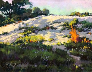 Sun Dappled Dune 11x14 by Terri Ford