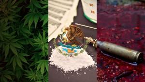 Odoya Bandiera messicana coca proiettili