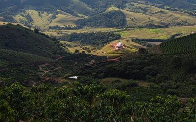 Fazenda Alta Vista