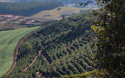 Fazenda Santa Inês