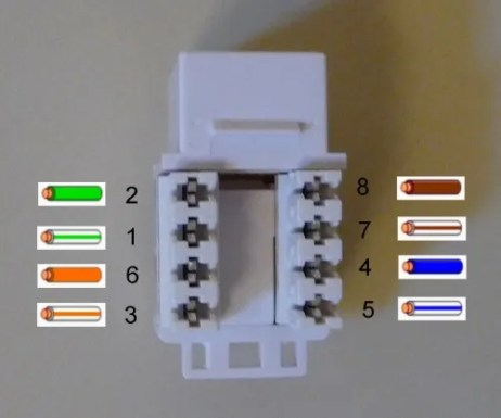 cat 5 socket wiring diagram cat wiring diagrams cat 5 wiring diagram socket wiring diagram