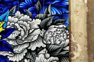 zoo lyon exposition de street art