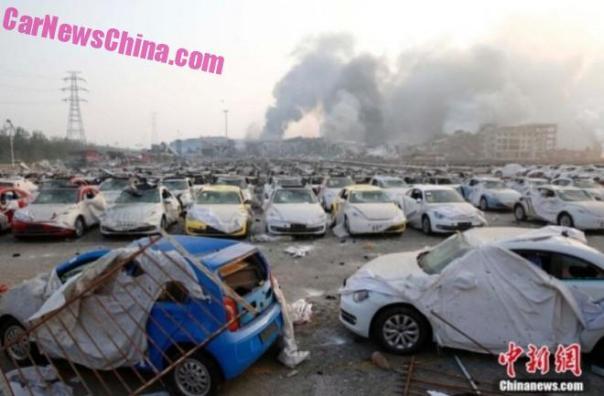 beetle-tianjin-china-5