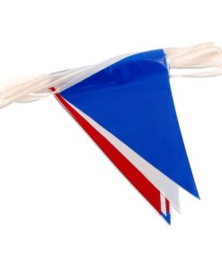 Red White Blue Pennant Carnival Supplies