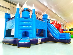 Frozen Castle Bouncy Castle Rental Singapore