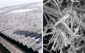 asbestos_1877599c