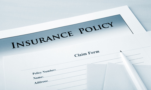 Insurance Policies and Mold Removal   Greenville SC