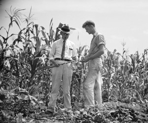 North Carolina has dirt in its past. Learn about the variety of soils in the state during the program Dirty History on Saturday, Aug. 8. Image credit: Library of Congress