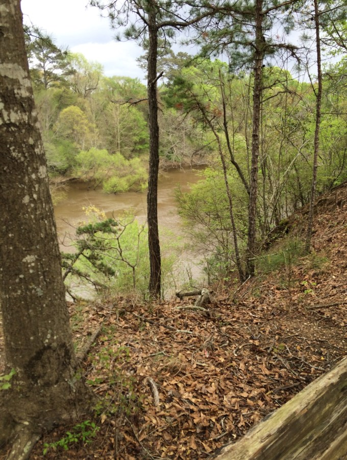 Cliffs of Neuse State Park