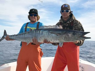 Big wahoo are common visitors to Gulf Stream temperature breaks off the coast of the Carolinas, especially out of Little River.