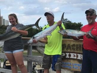 Apache Pier king mackerel