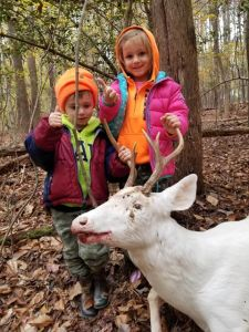 solid white buck