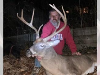 wide-racked buck